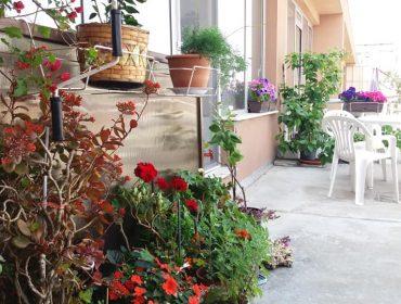 Вкусна храна и приятна обстановка в град Пловдив | Ресторант Кайорма 5